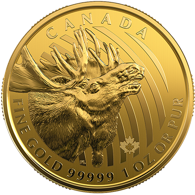 A picture of a 1 oz. Royal Canadian Mint Gold Coin Call of the Wild Series Moose (2019)