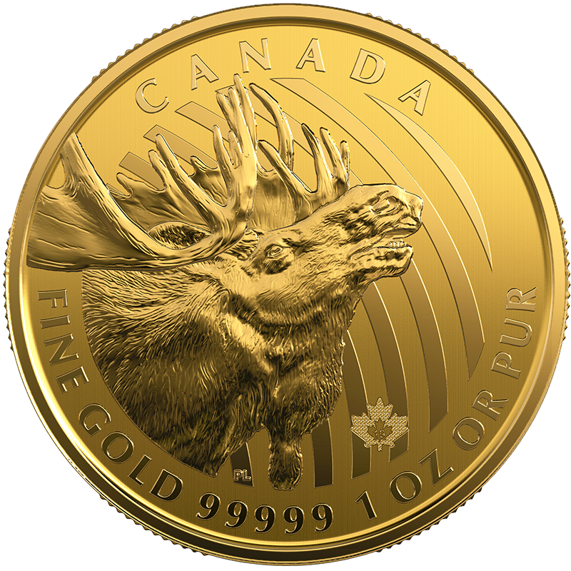 Image for 1 oz. Royal Canadian Mint Gold Coin Call of the Wild Series Moose (2019) from TD Precious Metals