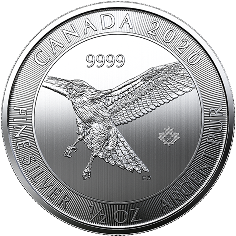 Buy the 1/2oz Silver Red-Tailed Hawk Coin